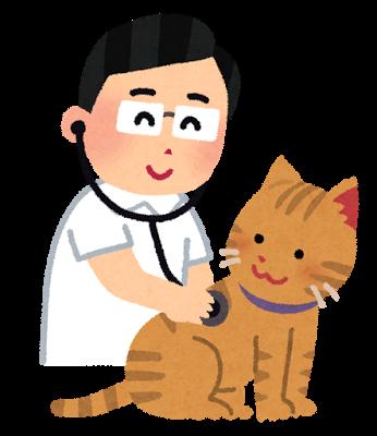ドクターと猫