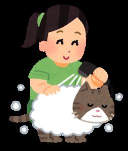 シャンプー猫