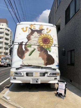 保護猫カフェ ひだまり号
